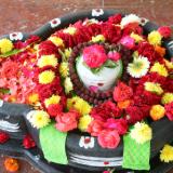 Vaidyanatha lingeswara
