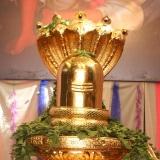 gold-shivalingam